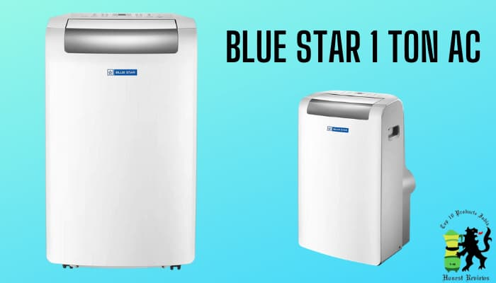 What We Liked About Blue Star