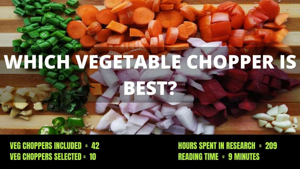 10 Best Vegetable Chopper in India 2021 – Expert Reviews & Buying Guide